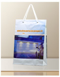 Promotional Bag In Transparent Plastic Alco Garages bagobag