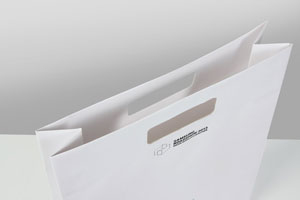 Exclusive paper bags with punched out handle hole